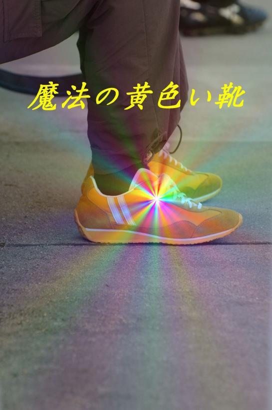 カマタマーレ讃岐練習 025