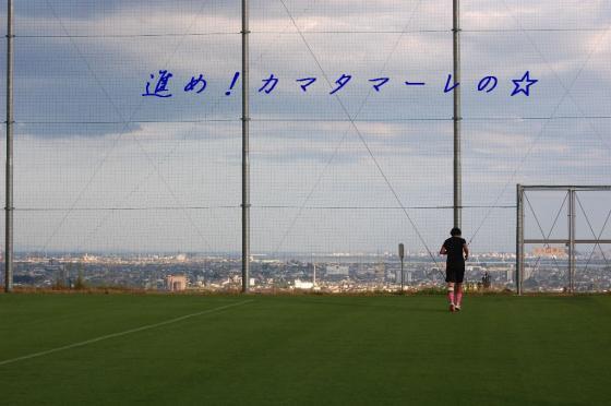 TSV徳島 462