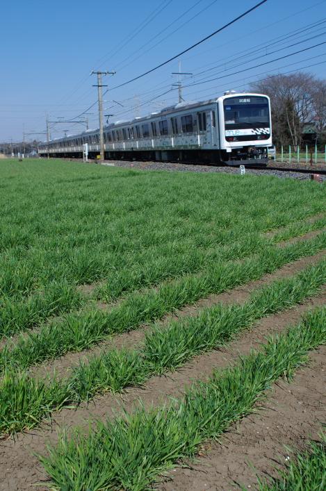 2012年3月29日 MUE train 2