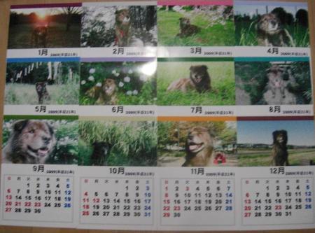 12枚カレンダー