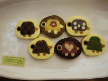 亀クッキーあっぷ