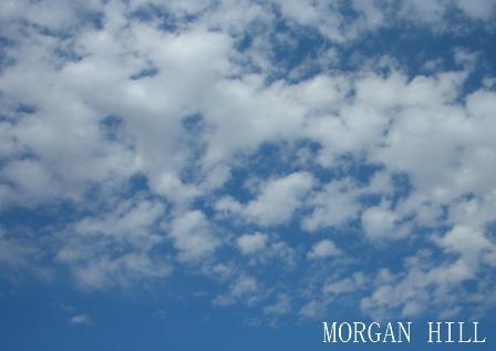 モーガン1