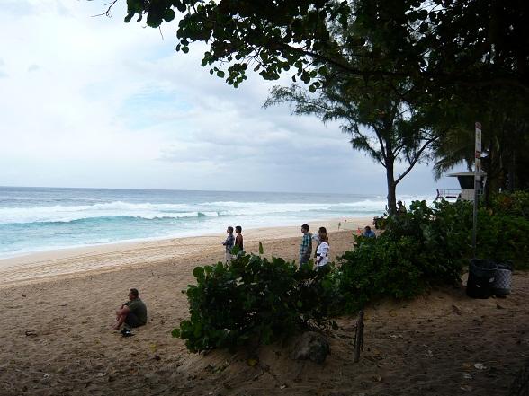 サーフィン見物