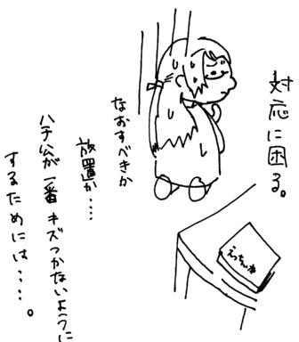 kazoku4-1-1.jpg