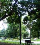 200606161824.jpg