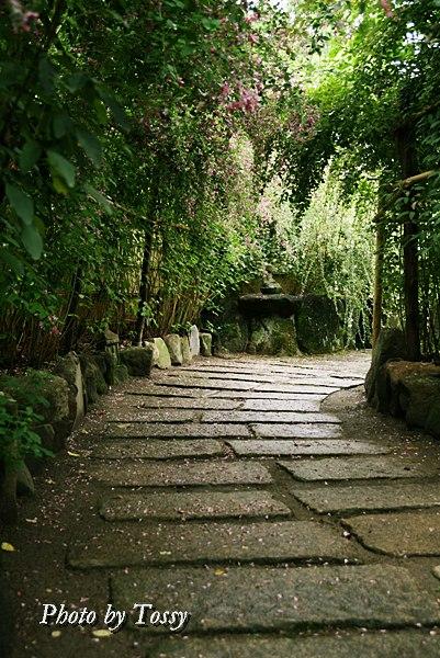 萩の散歩道