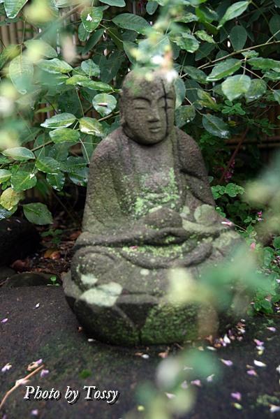ハギの寺の石仏1