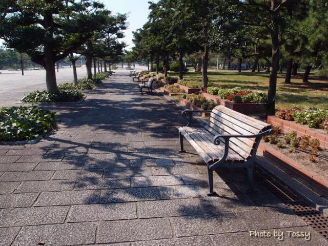 浜寺公園 ベンチ