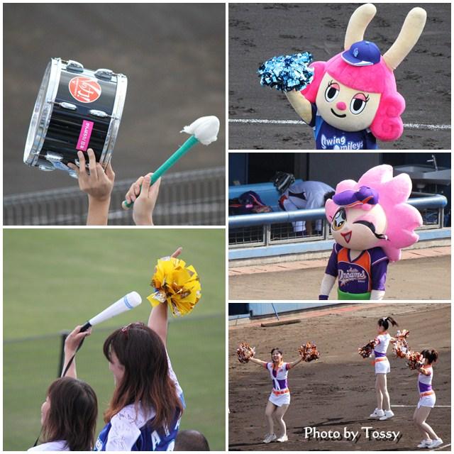 女子プロ野球 応援