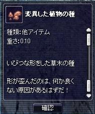09040106.jpg