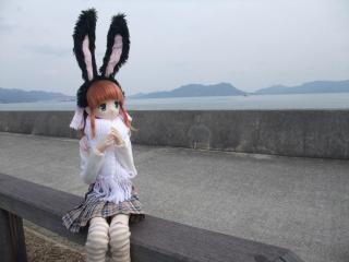 うさぎ島2011-01-59