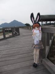 うさぎ島2011-01-60