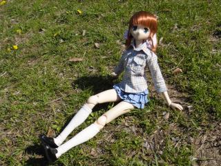 桜2011-05