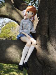 桜2011-06