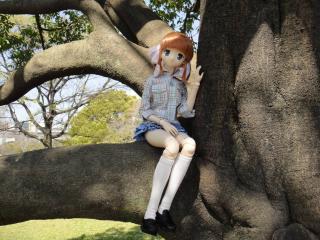 桜2011-07