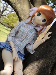 桜2011-08