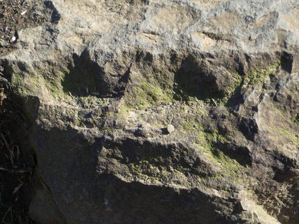 080124ドクロ石