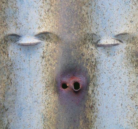080904瞑想する豚