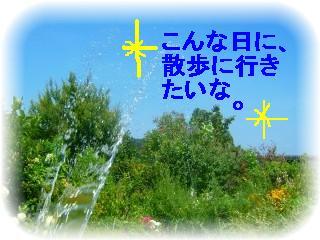 _2008_0803natu0004.jpg