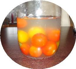 トマト酵母2日目