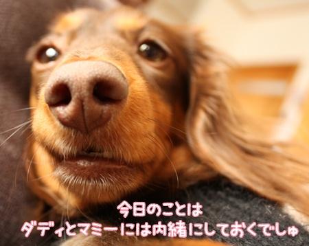 IMG_8452.jpg
