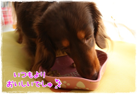 IMG_8573.jpg