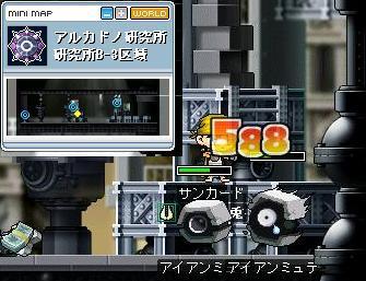 Maple0000072.jpg