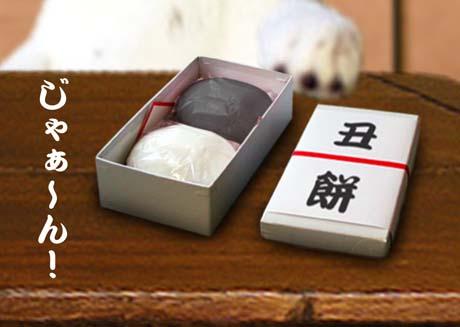 090719-usimochi.jpg