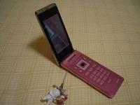 会社の人が黒とか白い携帯を持ってたのであえてピンクにw