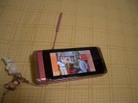 これは使うかどうかわからんけどテレビ映る携帯も初めてw