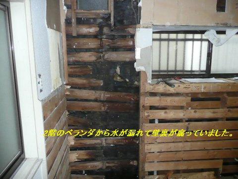 壁裏の被害