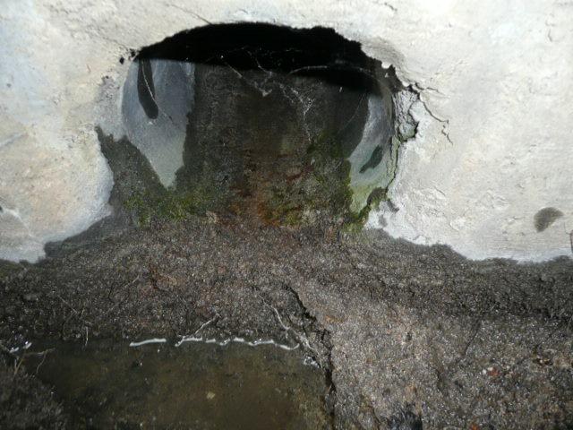 雨水管詰り 作業完了