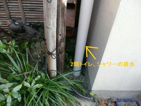 P1040718(2).jpg