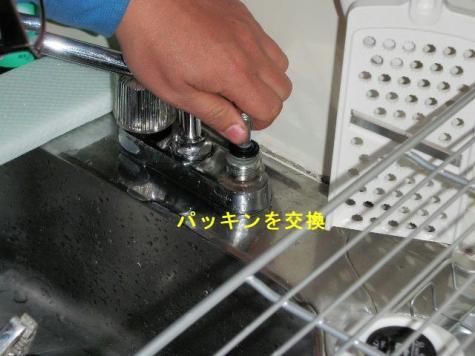P2060011(2).jpg