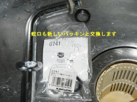 P2060017(2).jpg