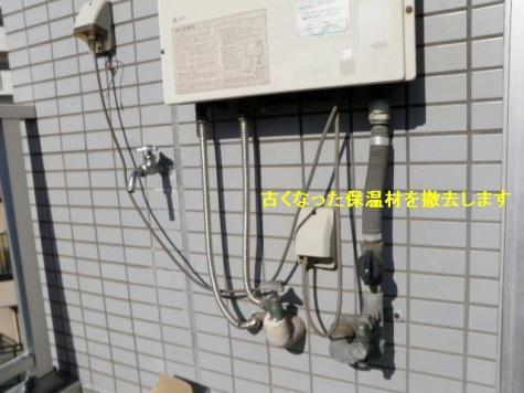 P2060024(2).jpg