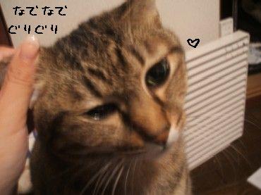 2008_10_17.jpg