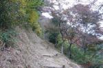 ハイキングコース2