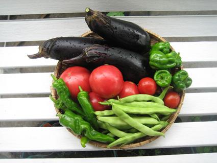 0717今日のお野菜