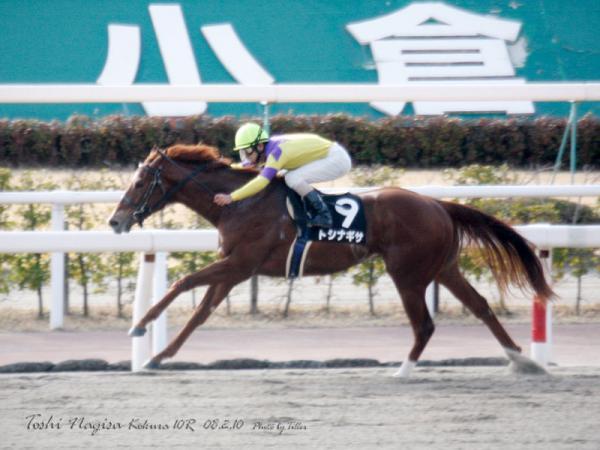 ToshiNagisa8021010_298raL800