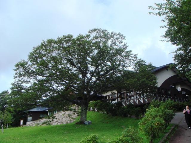 4.宿舎の庭2