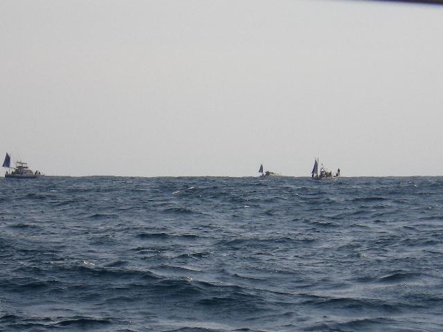 ジグ船多数