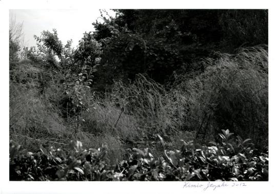 sAU120409KI001.jpg