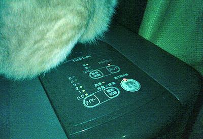 冷風機のスイッチを管理する猫