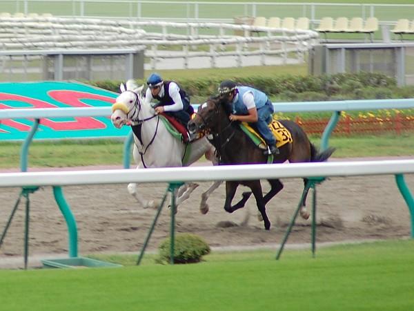 yukichan2.jpg