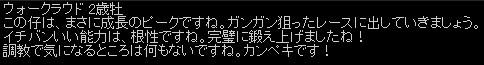 2011y02m13d_162605156.jpg