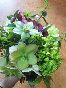 flower+003_convert_20080906083959[1]