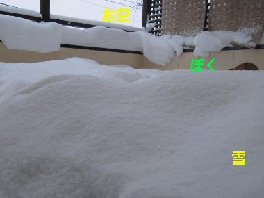 雪とぼくと空