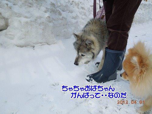 201200401_01.jpg