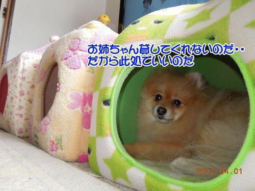 201200401_07.jpg